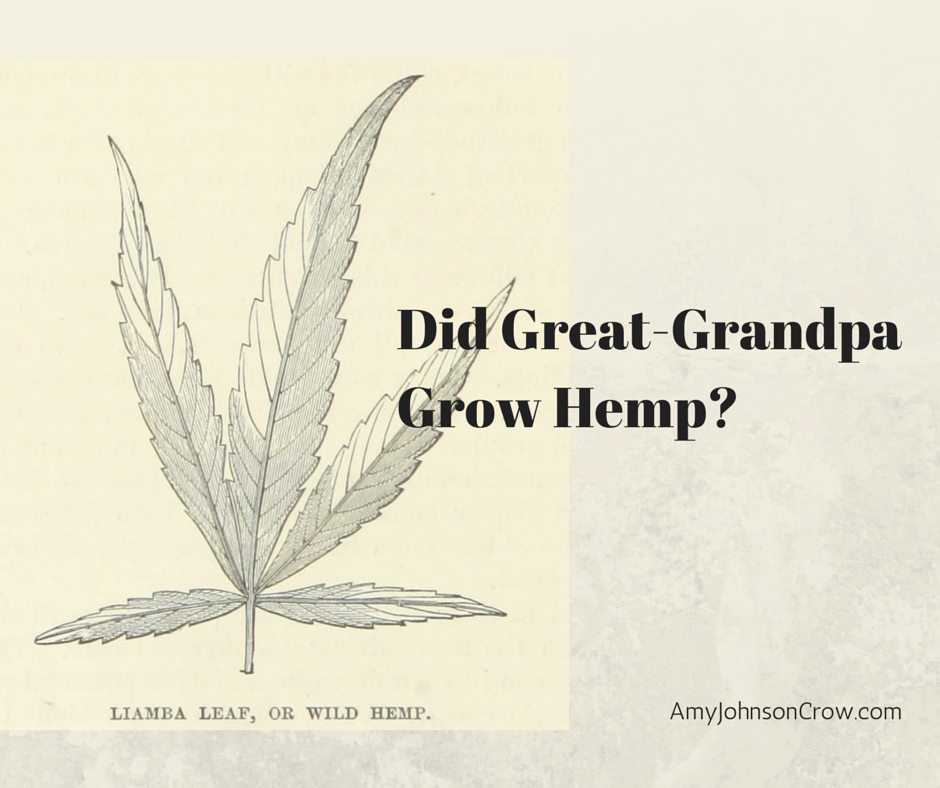 Did-Great-Grandpa-Grow-Hemp