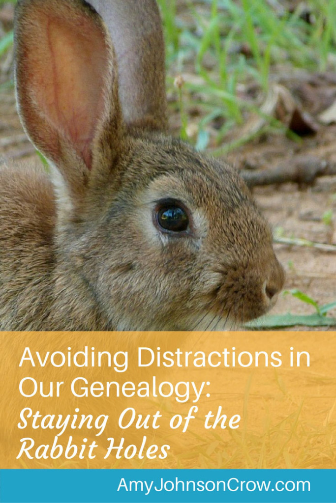 It's easy to fall down a rabbit hole when doing genealogy research. Avoiding distractions is key to making progress. Here's an effective tip for staying focused.