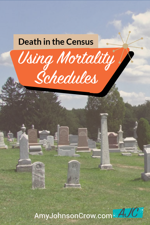 Using mortality schedules - death in the census